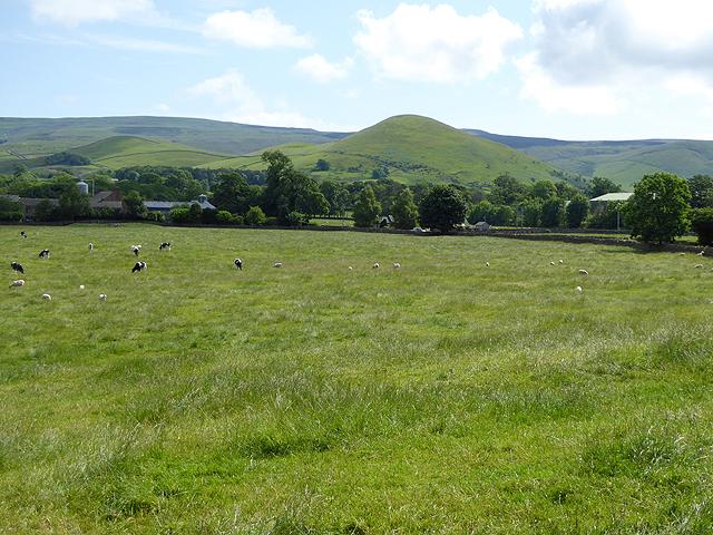 Field near Knock village