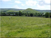 NY6627 : Field near Knock village by Oliver Dixon