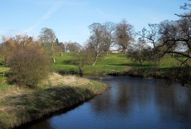 River Nidd, Ribston Park