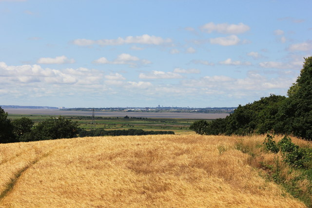 View towards Liverpool from the North Cheshire Way