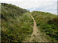 SN3607 : Sandy track above the beach, St Ishmael by Jaggery
