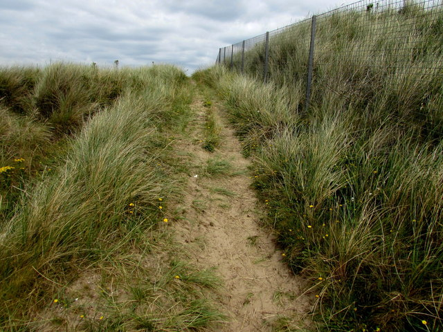 Sandy track through dunes, St Ishmael