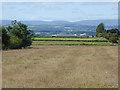 NY6726 : Fields near Knock by Oliver Dixon