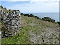 SX5645 : South West Coast Path above Stoke Down by David Smith