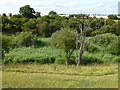 TF0301 : Hidden valley near RAF Wittering by Richard Humphrey