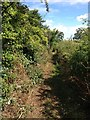 SP9676 : View along Nene Way by Dave Thompson