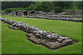 SN7465 : Strata Florida Abbey by Stephen McKay