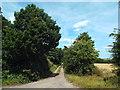 TM1529 : Track to Bluehouse Farm, near Wix by Malc McDonald