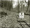 SO6419 : Lea Bailey Light Railway - stop here by Des Blenkinsopp