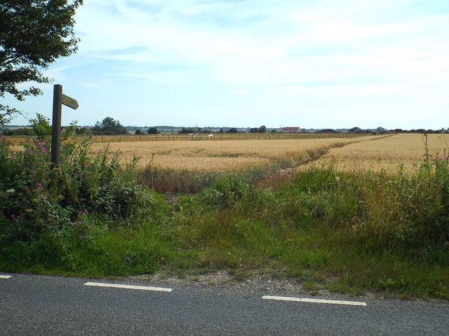 Public footpath near Great Oakley