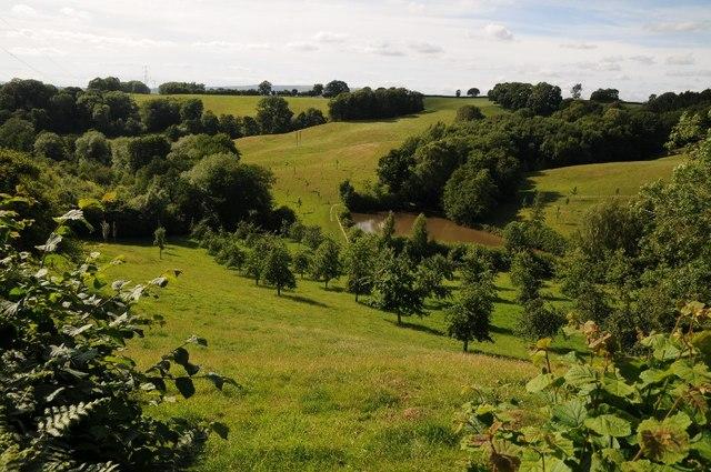 Farmland at Lindridge