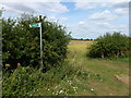 TF0204 : Start of footpath from Racecourse Road heading north by Richard Humphrey
