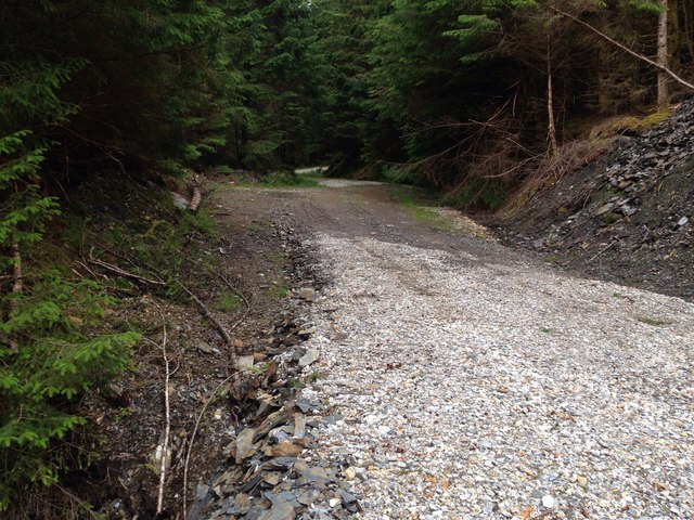 Forestry road above Loch Linnhe