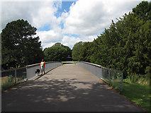SJ6855 : Queen's Park: footbridge, top view by Stephen Craven