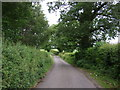 SK2640 : Lane beside Carr Wood by JThomas