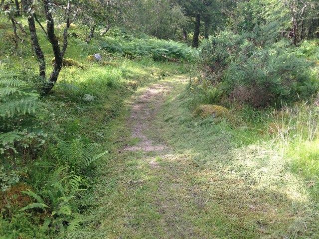 Footpath, Ariundle