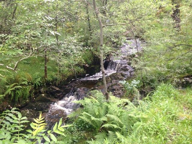 Small stream, Ariundle