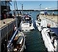 SU8201 : Chichester Marina Lock in use by Rob Farrow