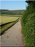 SU6621 : Farm track south of Henwood Down by Richard Law