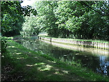 TQ3187 : The New River in Finsbury Park (3) by Mike Quinn