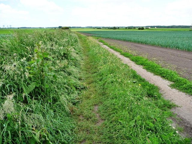 Public footpath heading north-west, Burscough Moss