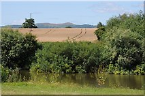 SO8442 : View to the Malvern Hills by Philip Halling