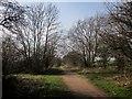 SE3849 : Harland Way by Derek Harper