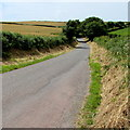 SS0096 : Stackpole Road, West Trewent by Jaggery