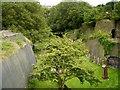 SJ3589 : St James' Garden (Cemetery) by David Dixon