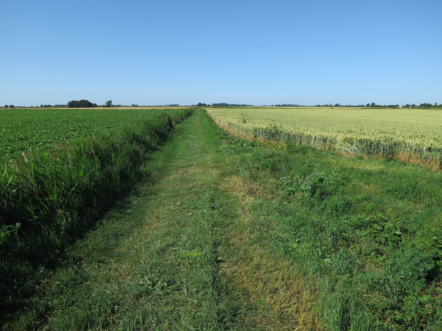 Bridleway from Lady Drove