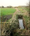 SE3750 : Drainage channel by the Harland Way by Derek Harper