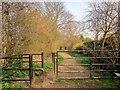 SE3650 : Gate on the Harland Way by Derek Harper