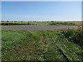 TF5803 : Bridleway crossing Lady Drove by Hugh Venables