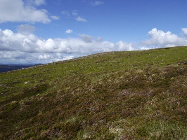 Slopes leading to Dunach Liath in Glencalvie Forest
