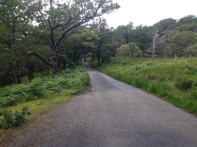 Minor road near Strathcoil