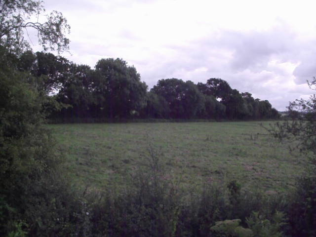Field to the east of the Swindon & Cricklade Railway
