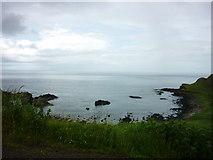 C9444 : Portnaboe, Giant's Causeway by Carroll Pierce