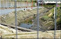 J3674 : Connswater and path, Connswater Street, Belfast (July 2015) by Albert Bridge