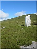 S2705 : Painted Standing Stone by kevin higgins