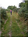 SO8293 : Path to Abbots Castle Hill by Gordon Griffiths