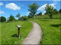 NS5073 : Douglas Muir Wildlife Trail by Lairich Rig