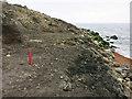 SZ4975 : Recent landslide, Rocken End by Hugh Venables