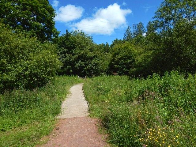 Path to Cochno Road