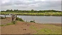 SK8166 : River Trent at Grassthorpe Holme by Chris Morgan