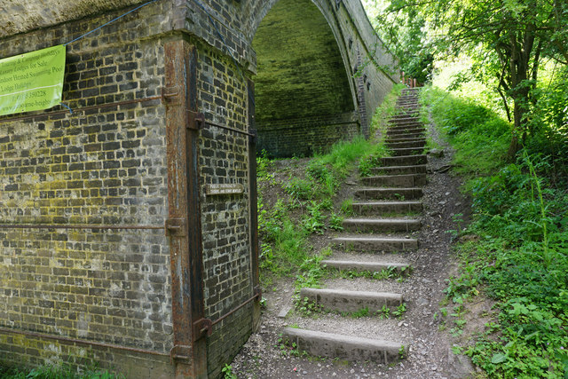 Steps out of the Fenny Bentley Cutting