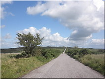 SS8429 : Ridge Road, West Anstey Common by Roger Cornfoot