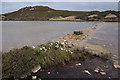 SH4490 : Pond near Mona Mine, Parys Mountain by Ian Taylor