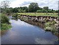 SJ8680 : River Bollin by Stephen Burton