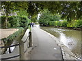 SP1620 : Alongside the Windrush, Bourton on the Water by Chris Allen