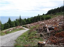 J3630 : Track junction on the slopes of Drinnahilly by Eric Jones